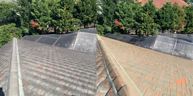 Destin, FL Soft Wash Roof Cleaning