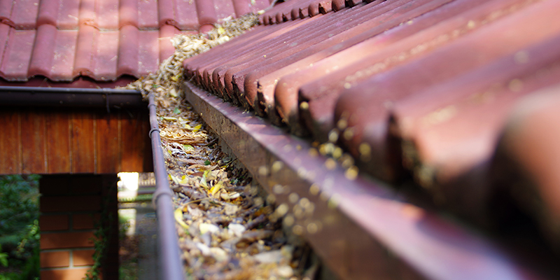 Seven Warning Signs It's Time to Clean Your Gutters