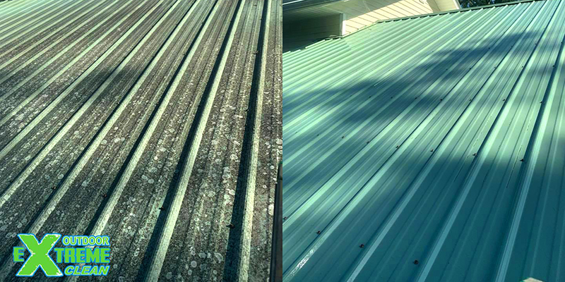 Why Professionals Should Handle Your Roof Cleaning